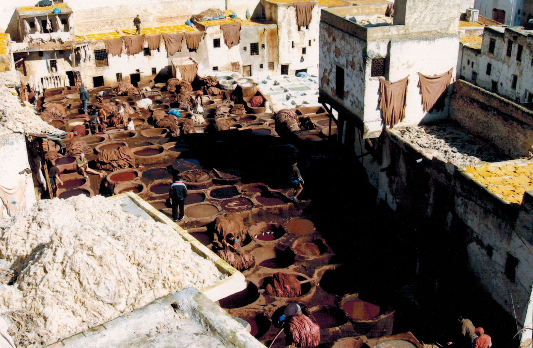 Leatherworkers at the Chouaras Tanneries of Fez, Morocco