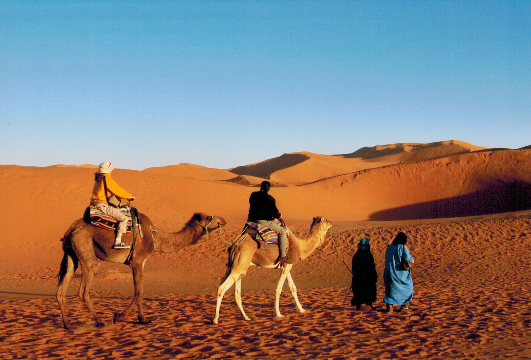 Berber-guided camel ride through the desert in Morocco