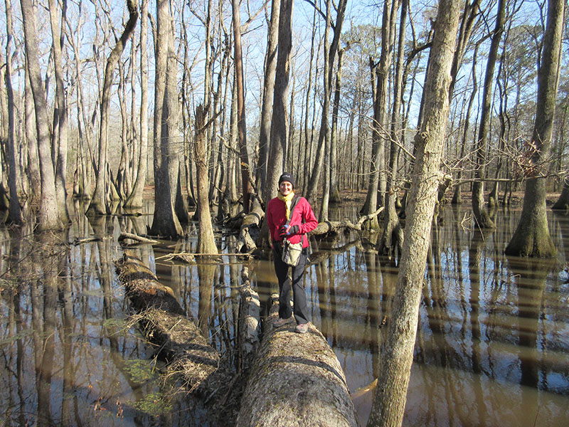 Christi on Natchez Trace Cypress Swamp Trail