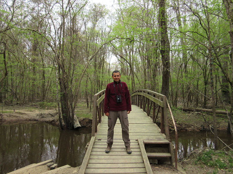 Hector in Congaree National Park