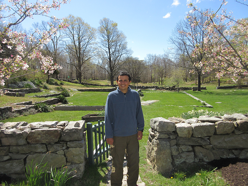 Hector in front of Weir Farm's stone walls