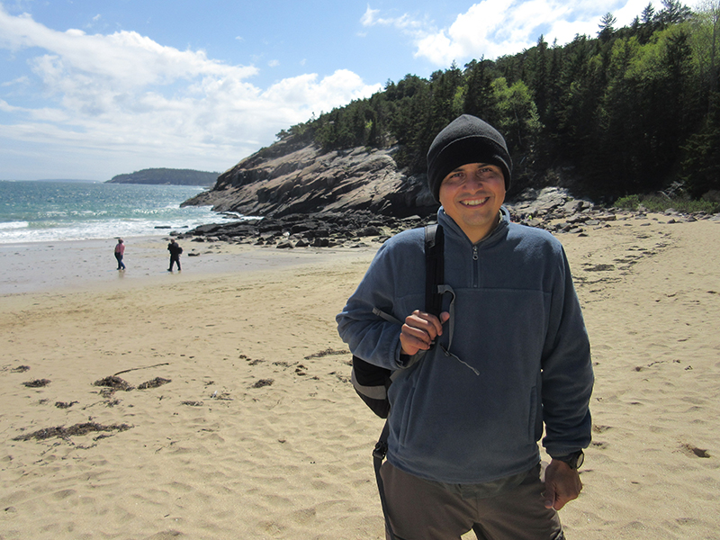 Hector on Sand Beach in Acadia National Park