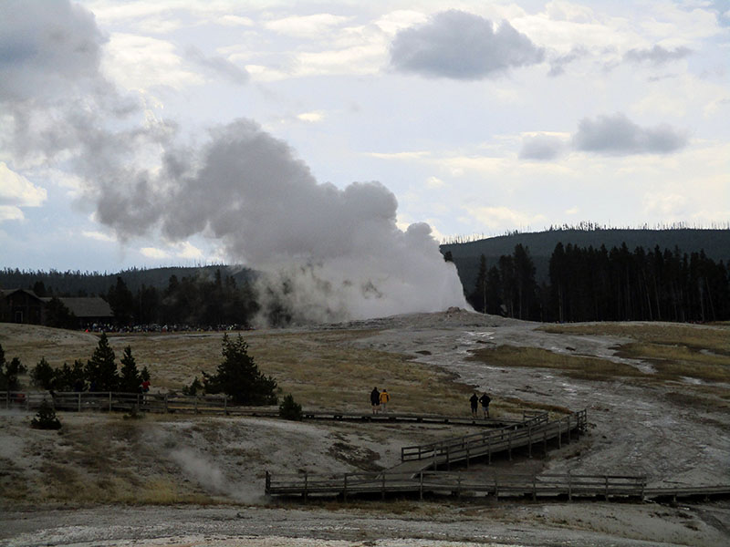Geyser basin at Yellowstone National Park