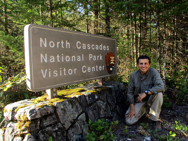 Hector in North Cascades National Park