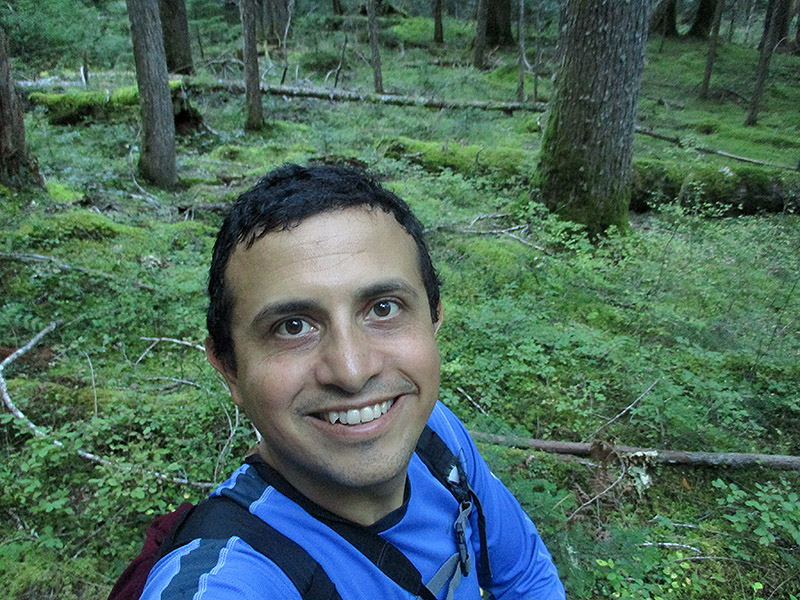 Hector near Ohanapecosh Campground in Mount Rainier National Park