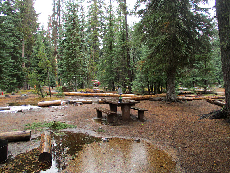 Crater Lake's Mazama Campground
