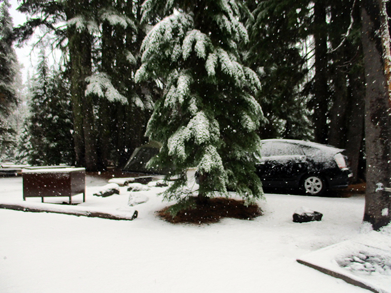 Snow at Crater Lake's Mazama Campground