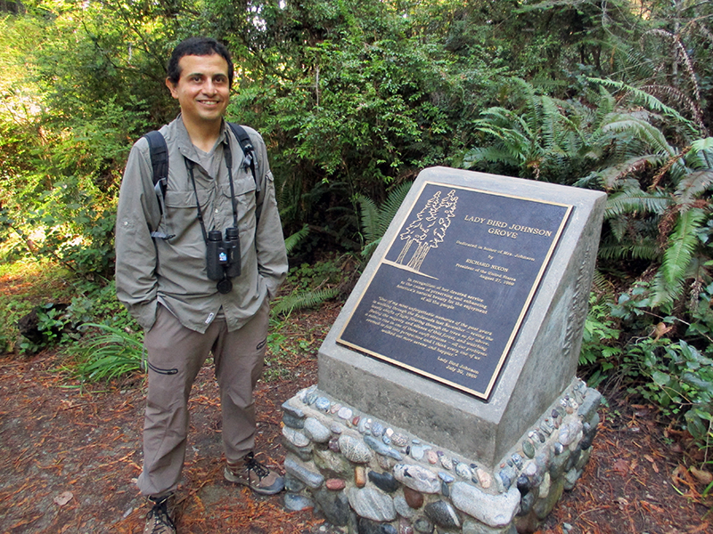 Hector in Lady Bird Johnson Grove at Redwood National Park