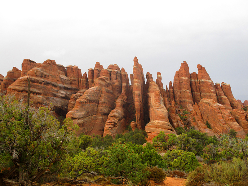 Rock fins in Arches National Park