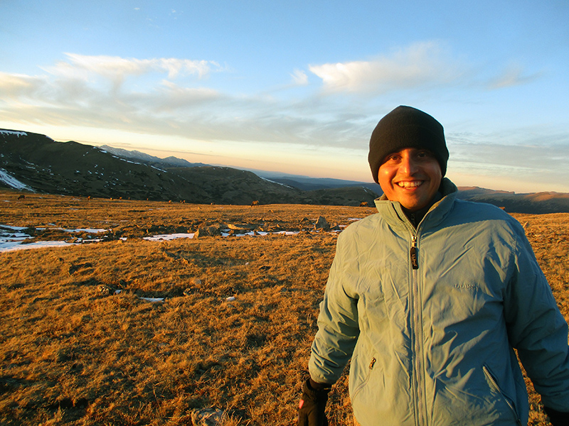 Hector with elk in Rocky Mountain National Park tundra