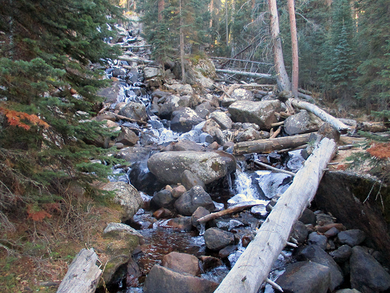 Calypso Cascades in Rocky Mountain National Park
