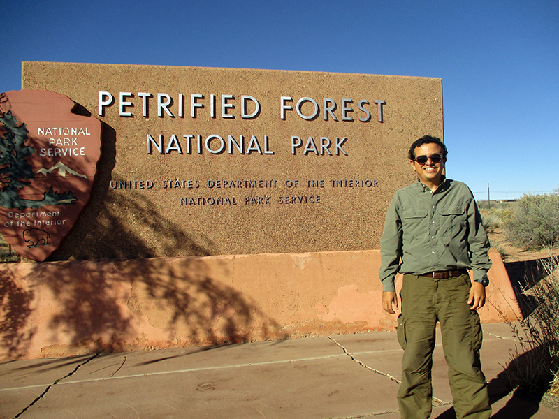 Hector at Petrified Forest National Park