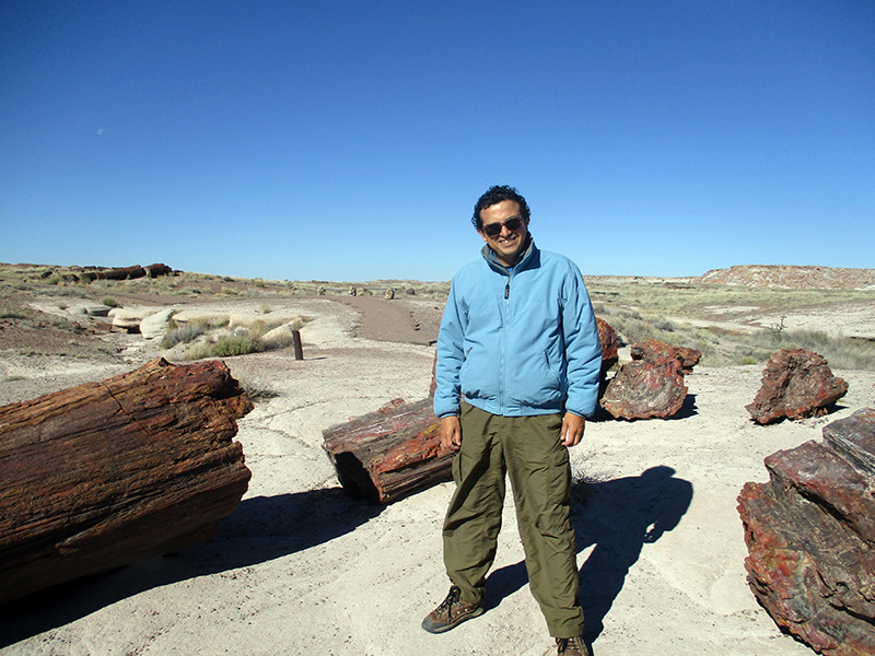 Hector in Petrified log in Petrified Forest National Park