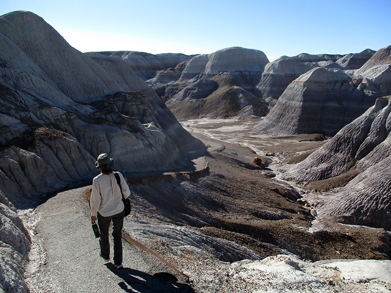 Christi in Petrified Forest National Park's Blue Mesa