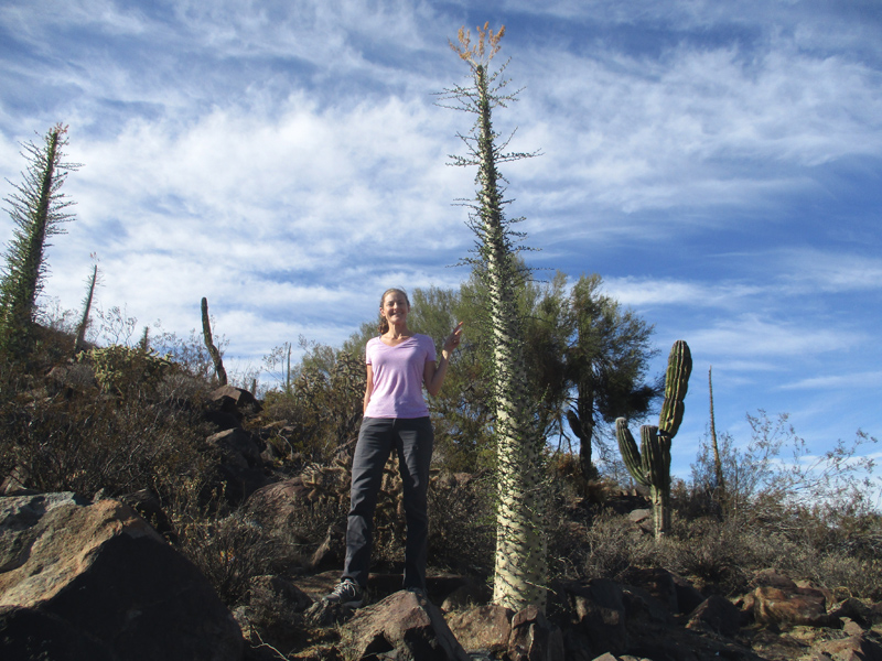Christi with a boojum tree in Baja California