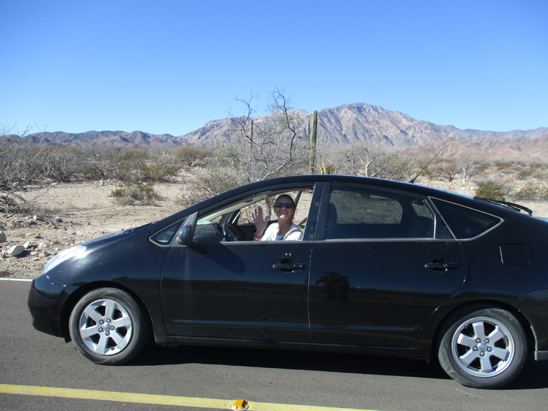 Christi in the Prius in Baja California