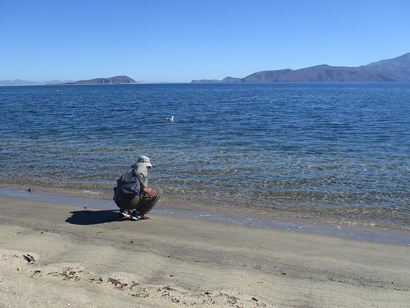Hector in Bahía de los Ángeles, Baja California