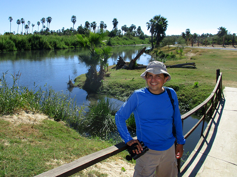Hector at the San José del Cabo estuary