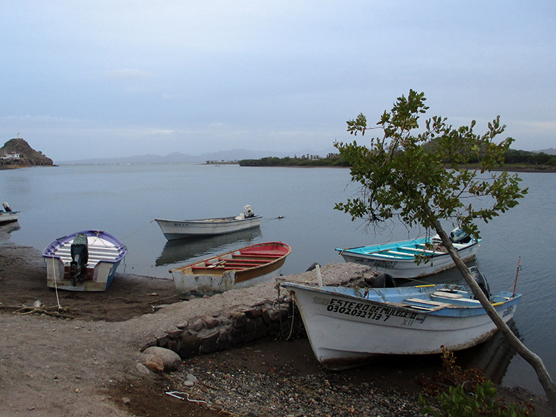 Boats on the Santa Rosalía River in Mulegé