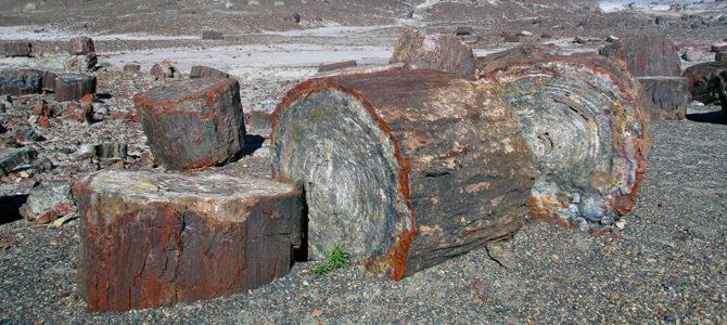 History and Prehistory in Arizona